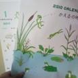 壁掛けカレンダー2010